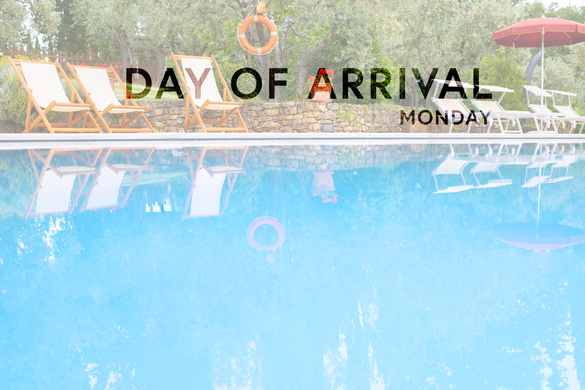 Day of Arrival Bild